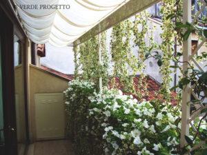 Privacy in terrazzo con schermatura piante