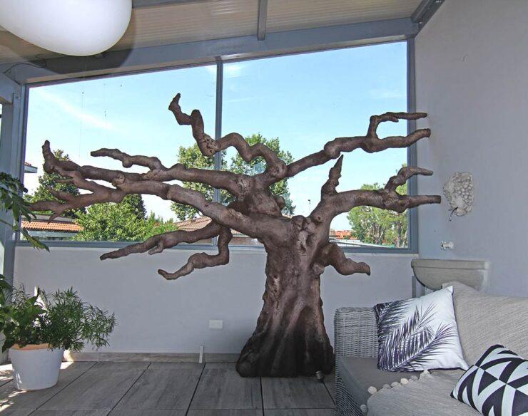 albero gatto in terrazzo